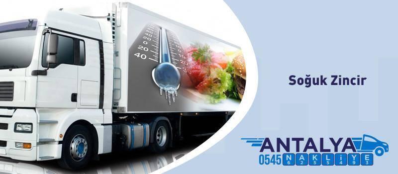 Antalya Soğuk Zincir Donuk Ürün Taşımacılığı yapan firmalar