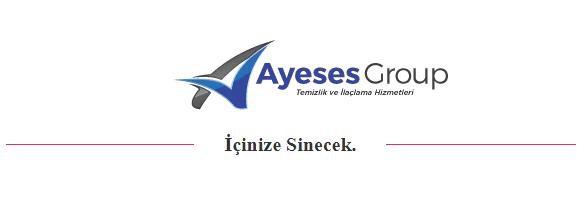 İstanbul Ev Temizliği ve İşyeri Temizleme Firması Ayeses Group
